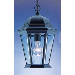 Find the perfect 1-Light Outdoor Hanging Lantern By Volume Lighting