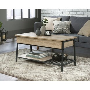 Bryndis Lift Top Coffee Table By Latitude Run