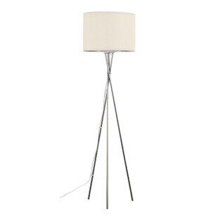Rattan floor lamp wayfair save to idea board mozeypictures Choice Image