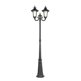 Gunnell Outdoor 2-Light Post Light by Three Posts
