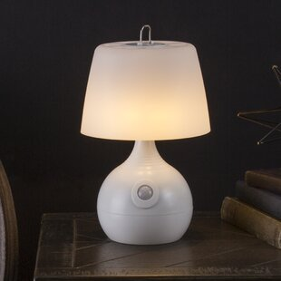 Motion Sensor Indoor Lights | Wayfair