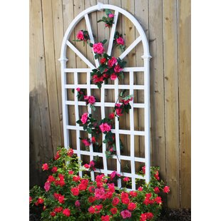 Athens Vinyl Arched Trellis By Sol 72 Outdoor