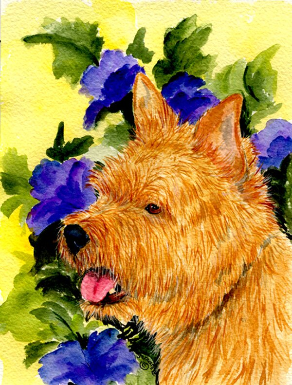Caroline S Treasures Norwich Terrier 2 Sided Garden Flag