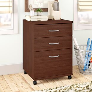Campus 3-Drawer Mobile Vertical File