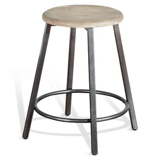 Adrienne 24 Bar Stool Williston Forge