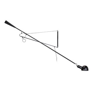 Symple Stuff Levan Iron 1-Light Swing Arm