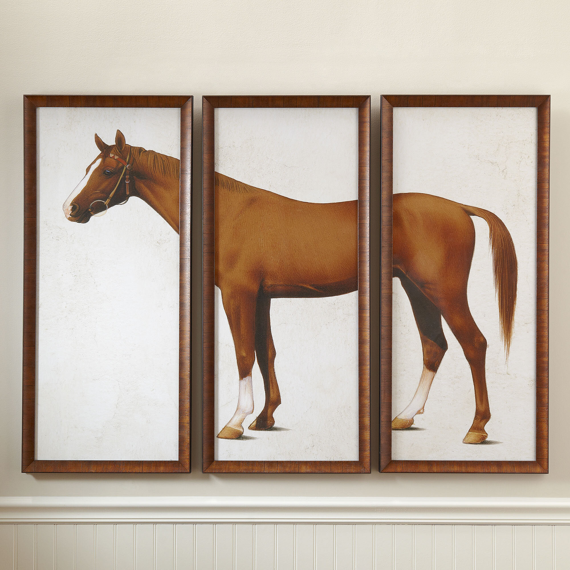 Birch Lane™ Horse Triptych Framed Print | Birch Lane
