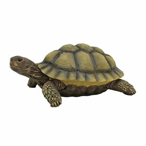 Gilbert the Box Turtle Statue (Set of 2)