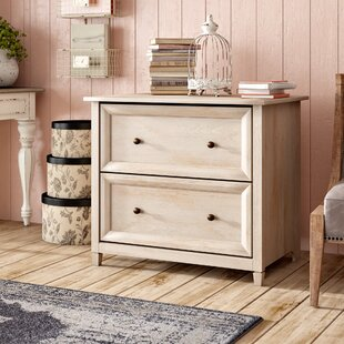 Lark Manor Lemire 2 Drawer Fil..