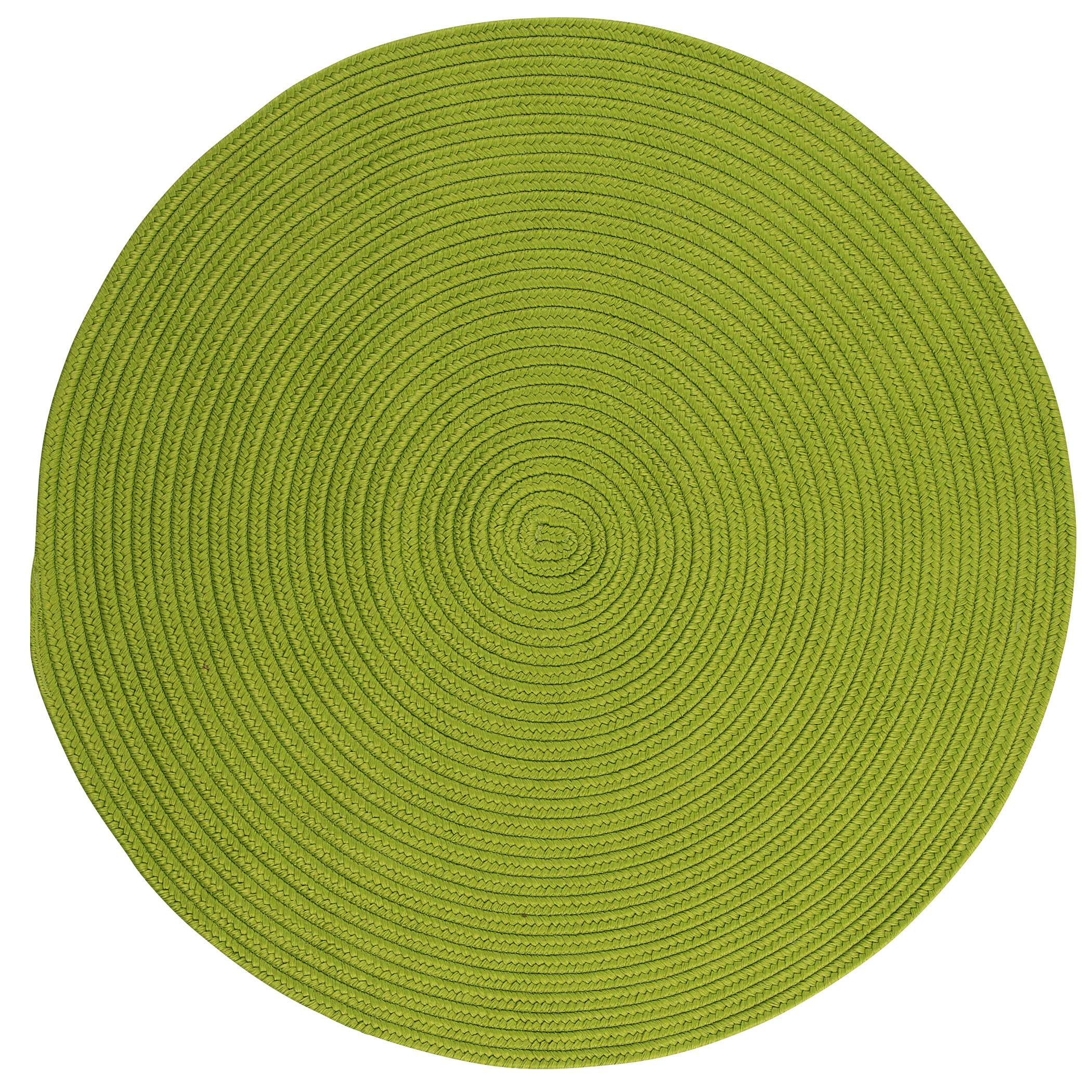Winston Porter Mcintyre Braided Green Area Rug Reviews Wayfair