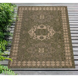 Arverne Green Indoor/Outdoor Area Rug
