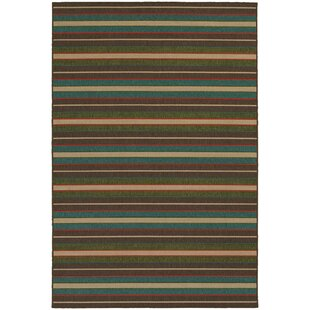 Seaside Teal Blue/Brown Indoor/Outdoor Area Rug