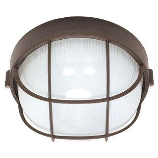 Williston Forge Chante Rustic 1-Light Outdoor Bulkhead Light