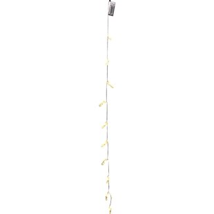 The Holiday Aisle Blaise Clip String 10 Light Novelty String Lights
