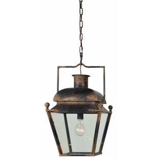 Breakwater Bay Janessa 1-Light Lantern Pendant