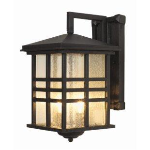 Calderon Wall Lantern