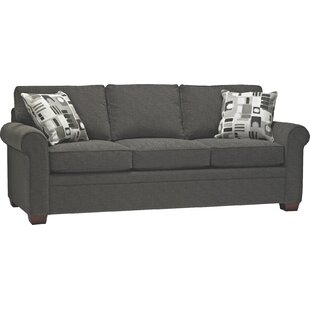 Find the perfect Mcmeans Double Sleeper Sofa by Red Barrel Studio Reviews (2019) & Buyer's Guide