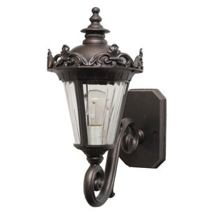 Petrey 1-Light Outdoor Sconce by Alcott Hill