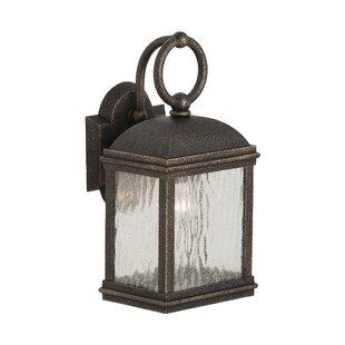 Burg 1-Light Outdoor Wall Lantern