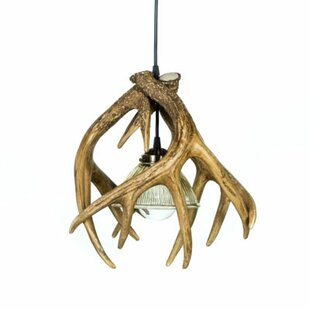 Millwood Pines Eilidh 1-Light Novelty Pendant