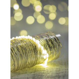 Caillo 12 ft. 40-Light Fairy String Light (Set of 2) by The Holiday Aisle