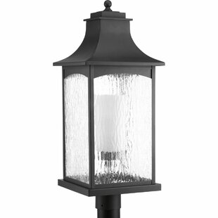Best Price De Witt 1-Light Lantern Head By Darby Home Co