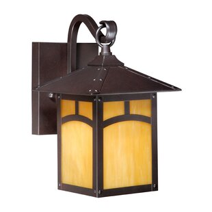 Loon Peak Pompa 1-Light Outdoor Wall Lantern