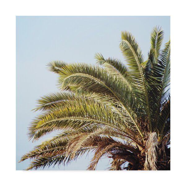 Bay Isle Home Endless Summer I Crop Photographic Print On Wrapped Canvas Wayfair