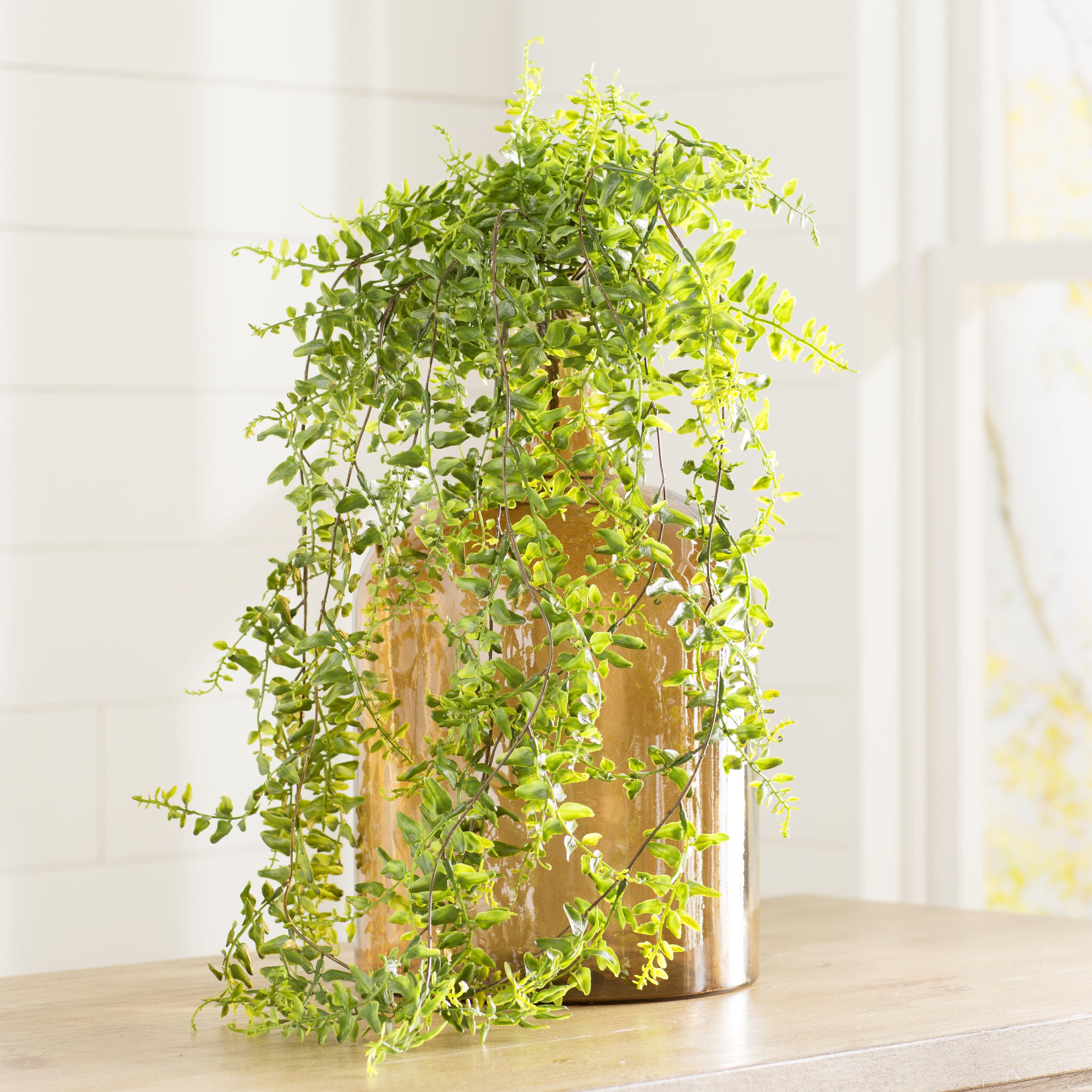 Lark Manor Artificial Fern Vine Foliage Plant & Reviews | Wayfair