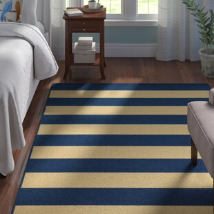 Alford Hand-Woven Dark Blue/Ivory Indoor/Outdoor Area Rug