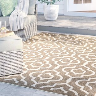 Larson Brown/Bone Indoor/Outdoor Area Rug