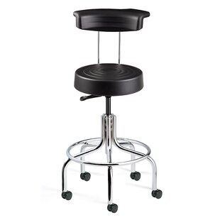 ErgoLux Height Adjustable Stool with Backrest by BEVCO