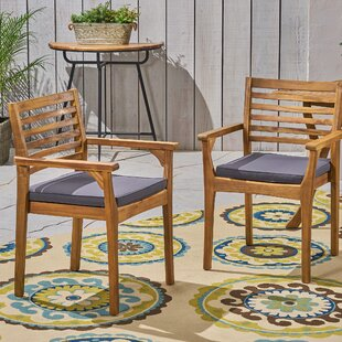 Cleghorn Patio Dining Chairs with Cushions (Set of 2)