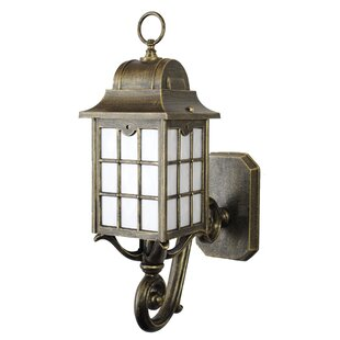 Darby Home Co Archard 1-Light Outdoor Sconce