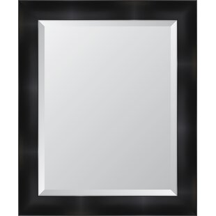 Melissa Van Hise Black Resin Frame Wall Mirror