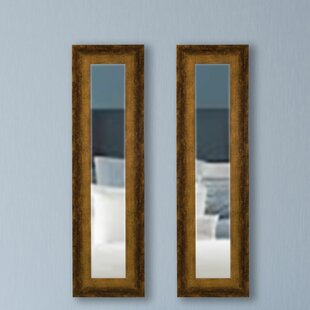 Brayden Studio Panel Accent Mirror (Set of 2)