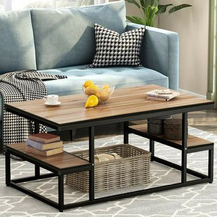 Northup Modern Industrial Coffee Table with storage