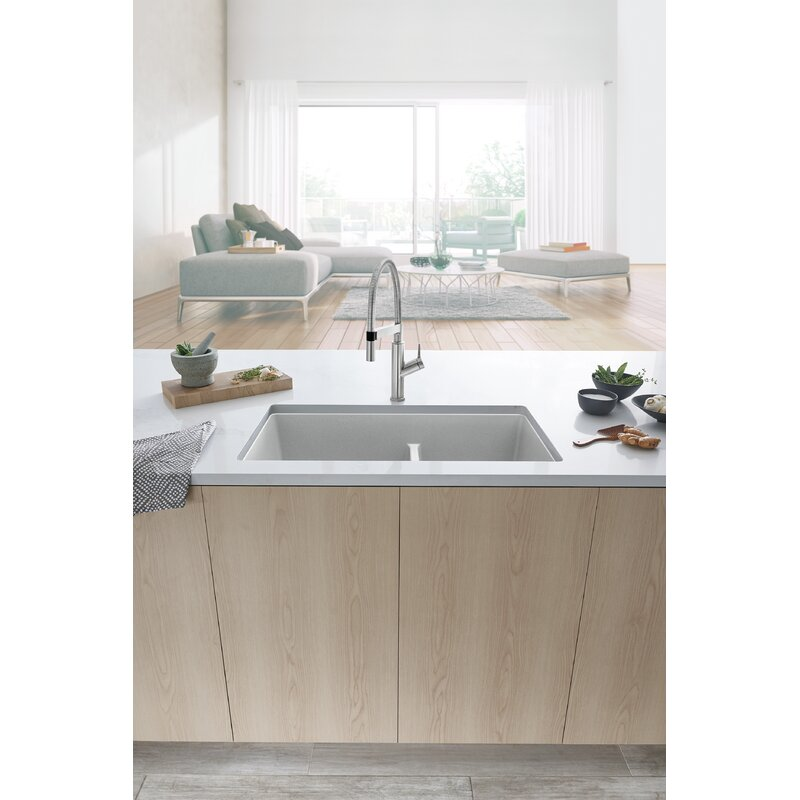 Blanco Solenta Semi-Professional Pull Down Single Handle Kitchen Faucet  Finish: Stainless