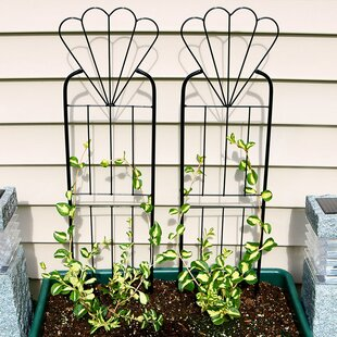 Winston Porter Greentop Flower Design Steel Gothic Trellis (Set of 2)