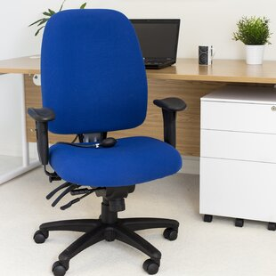 High-Back Ergonomic Office Chair By Symple Stuff