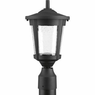 Affordable Price Duke 1-Light Lantern Head By Alcott Hill