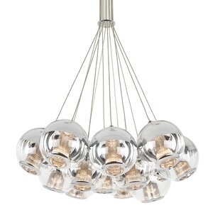 Ivy Bronx Amezquita Globes 12-Light LED Cluster Pendant