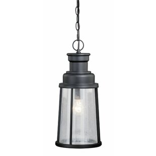 Reviews Cascades 1-Light Outdoor Pendant By Trent Austin Design