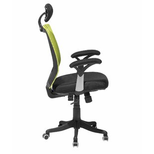 Declue Mesh Task Chair