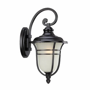 Berryhill Outdoor Wall Lantern by Fleur De Lis Living