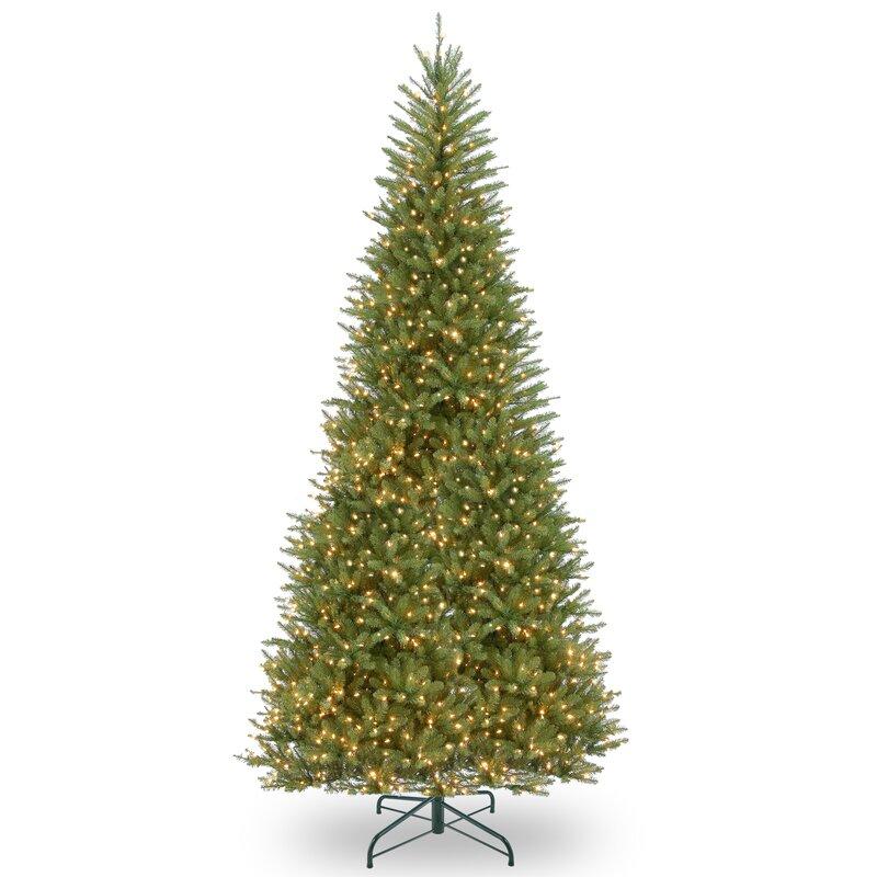 Next Slim Christmas Tree: Red Barrel Studio Slim 12' Green Fir Artificial Christmas