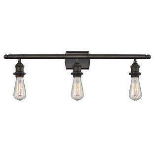 Torrington 3-Light Vanity Light ByWilliston Forge