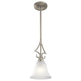 Cardington 1-Light Cone Pendant by Darby Home Co