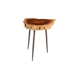 Phillips Collection Makha Burled Wood End Table