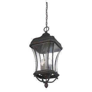 Alcott Hill Hartness 4-Light Outdoor Hanging Lantern